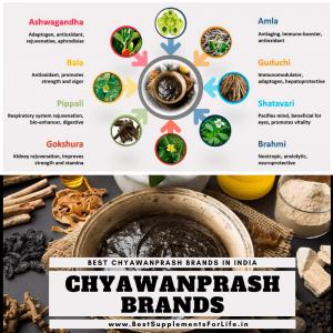 Chyawanprash Brands