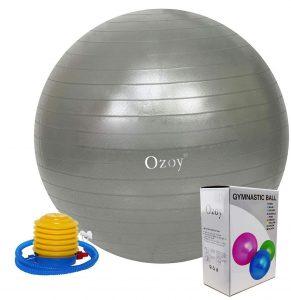 Owme Exercise Heavy Duty Gym Ball Non-Slip Stability Ball