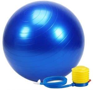 RYLAN Anti-Burst Exercise Gym Ball 65cm with Pump