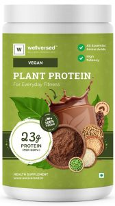 Wellversed Plant Protein